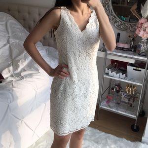 White lace scallop sheath dress NEW